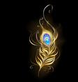 golden peacock feather vector image