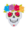 human skull and flower wreath isolated cranium vector image