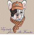 hipster dog French Bulldog vector image