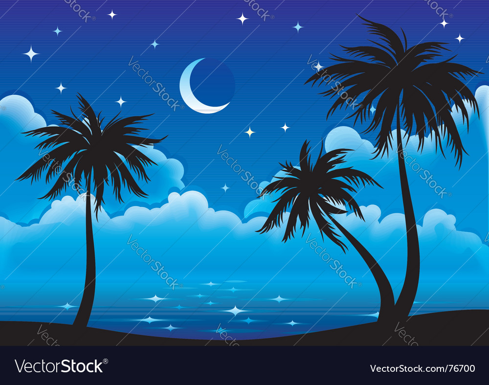 Night coast vector