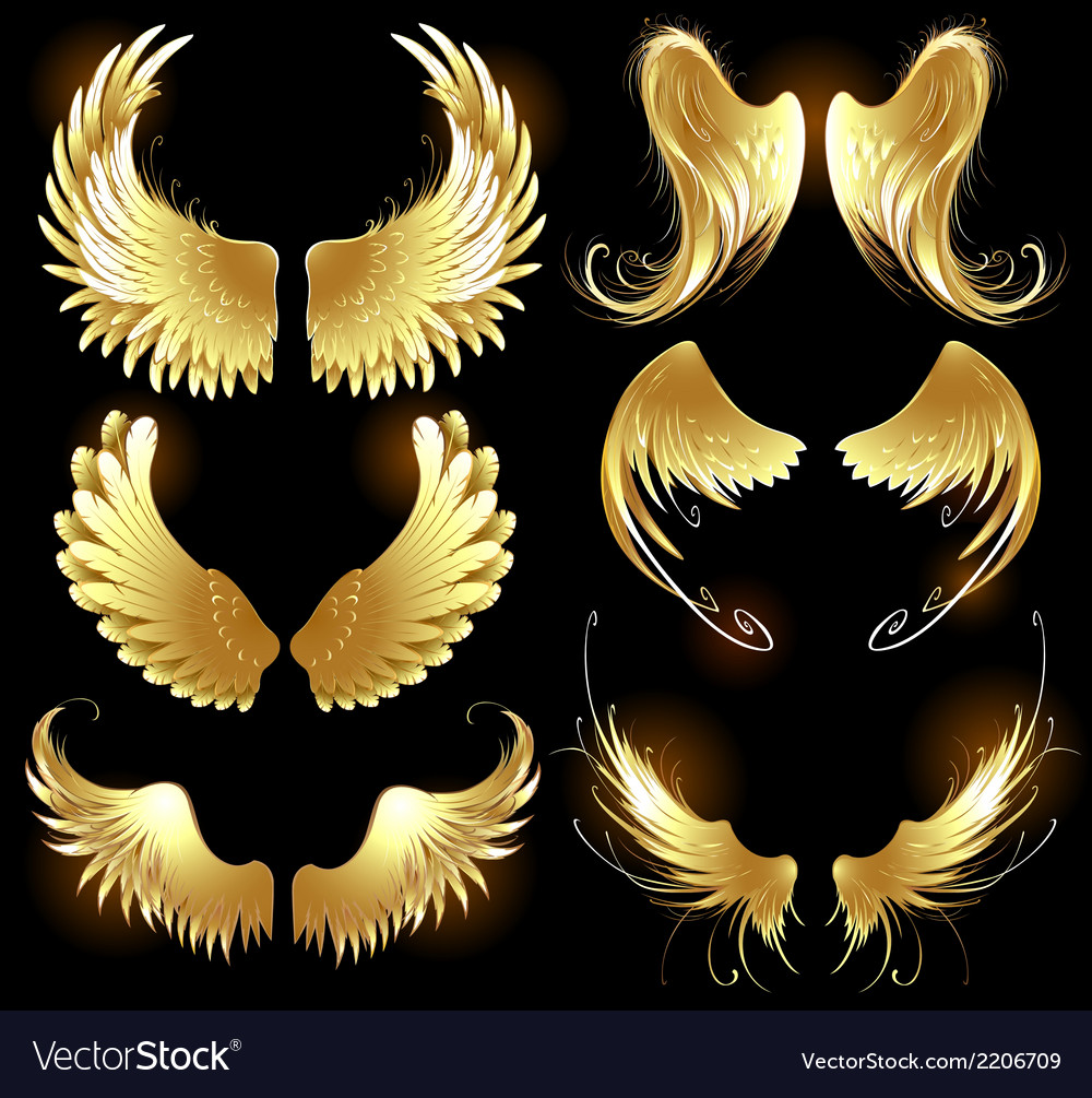 Golden wings of angels vector
