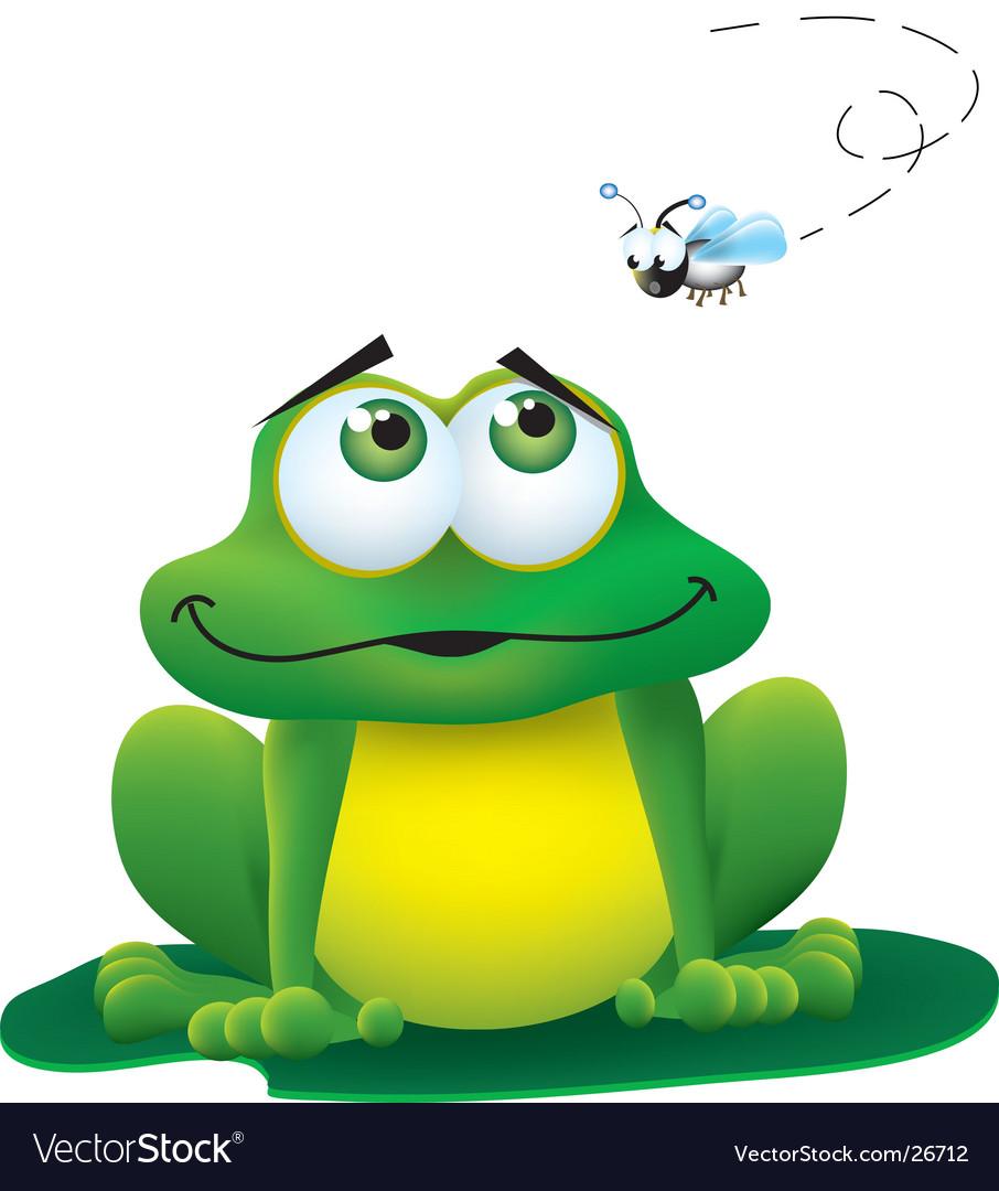 Frog and fly vector