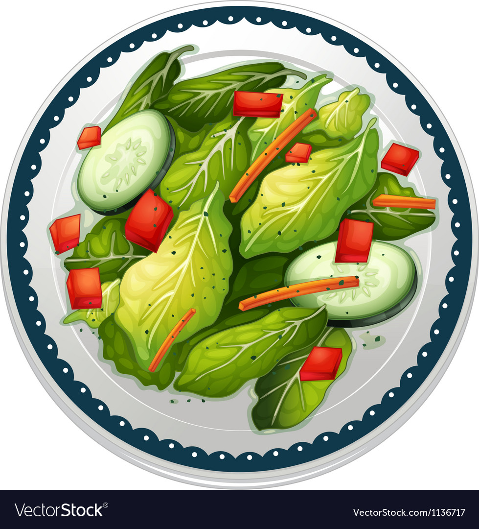 Salad and a dish vector