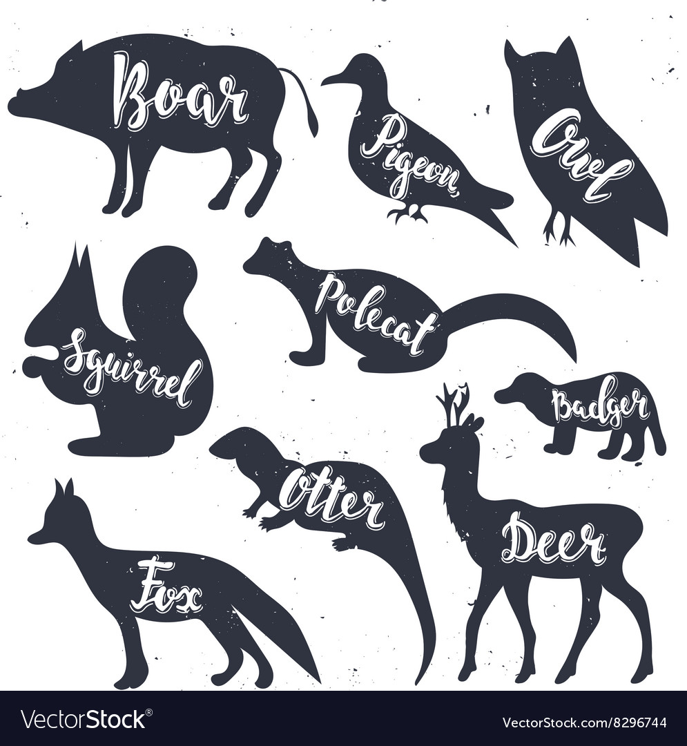Wild animals silhouettes with lettering boar vector