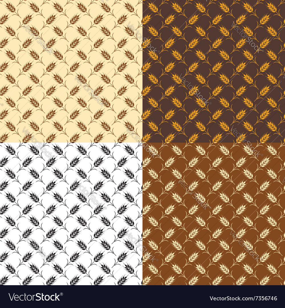 Wheat patterns vector
