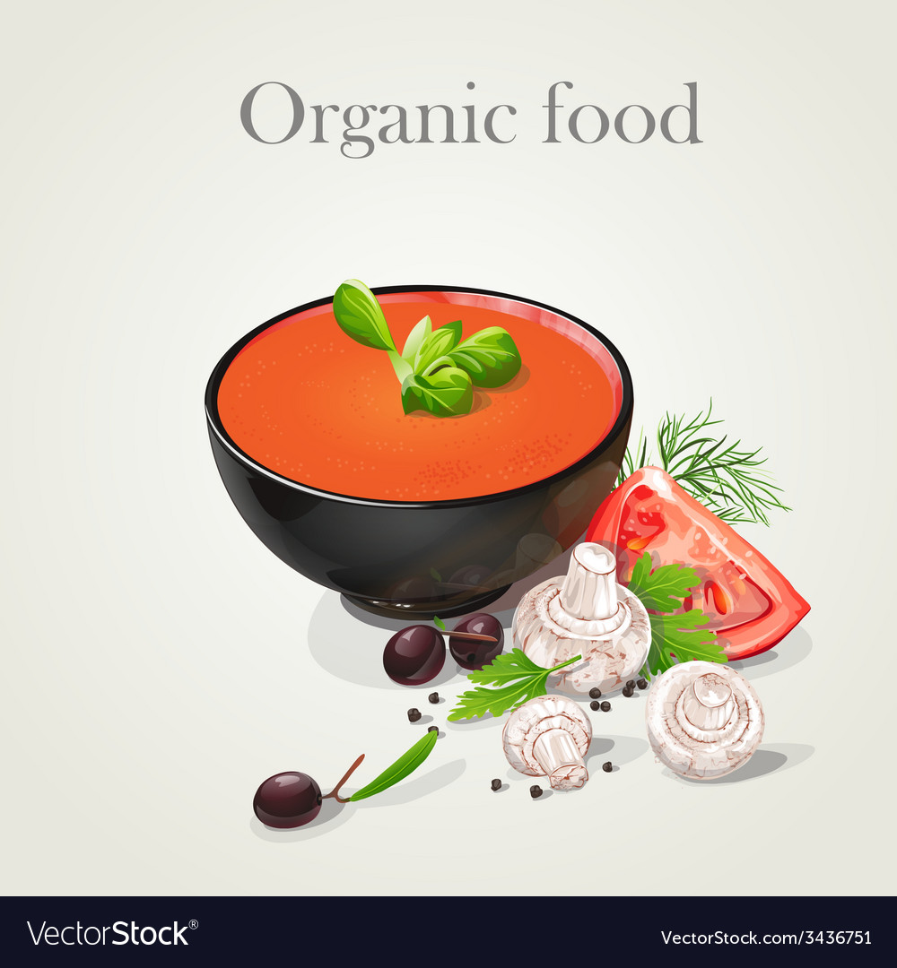 Tomato soup with fresh vegetables vector