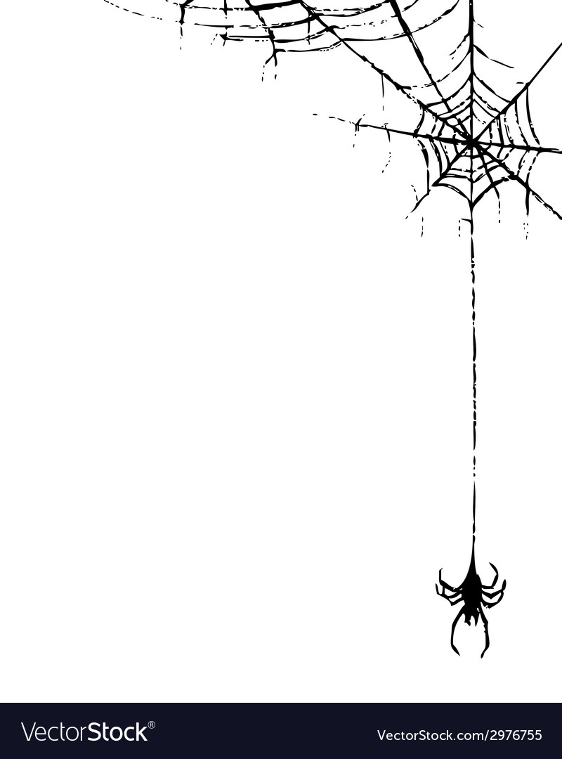 Spiderweb and spider vector