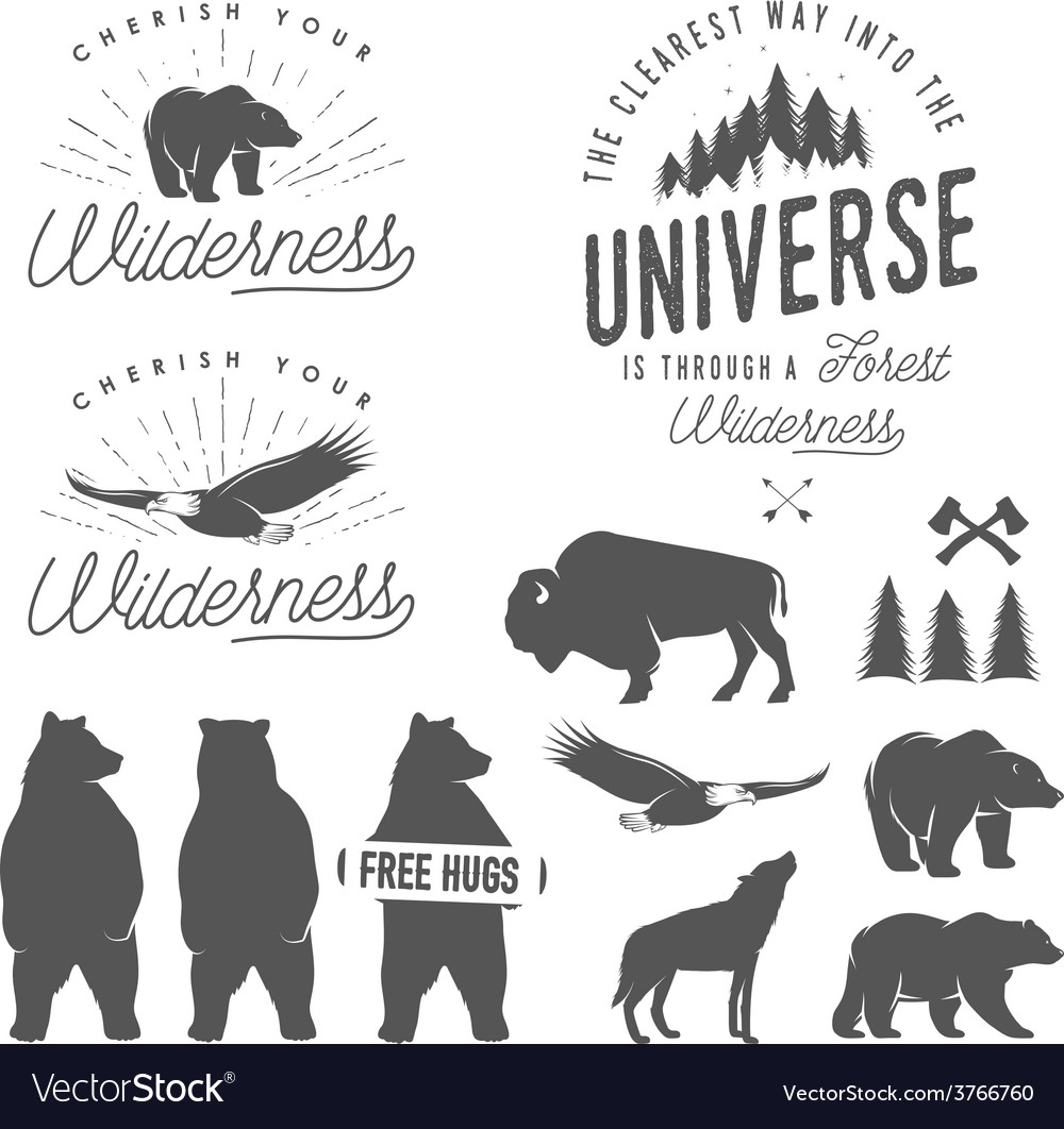 Set of wilderness design elements vector