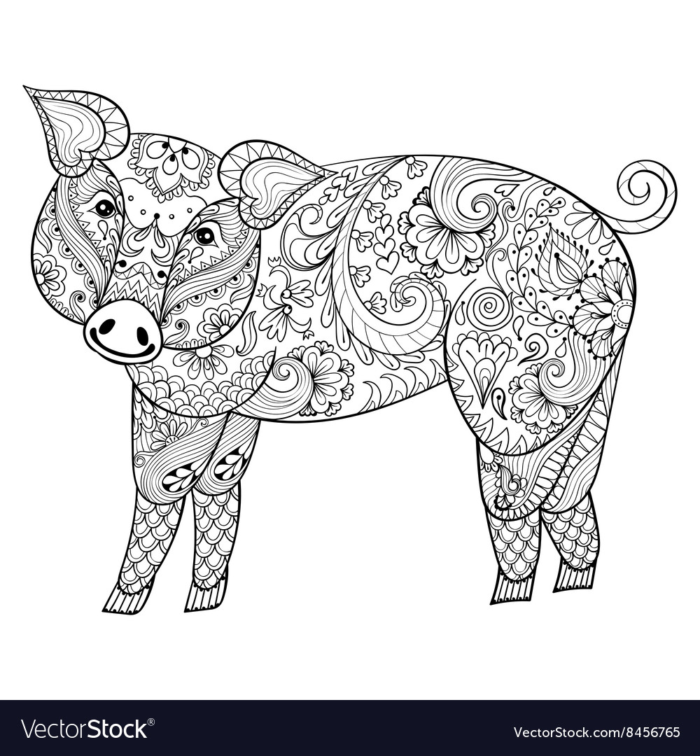 Pig zentangle pig swine vector