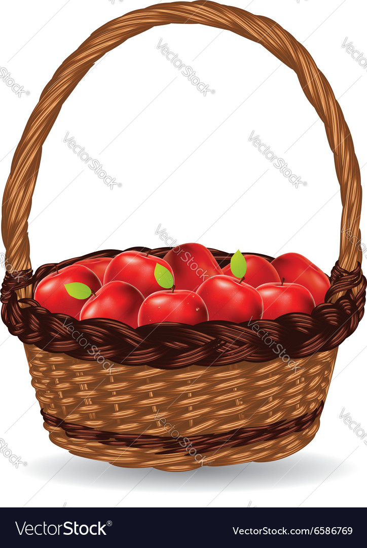 Basket of red apples3 vector