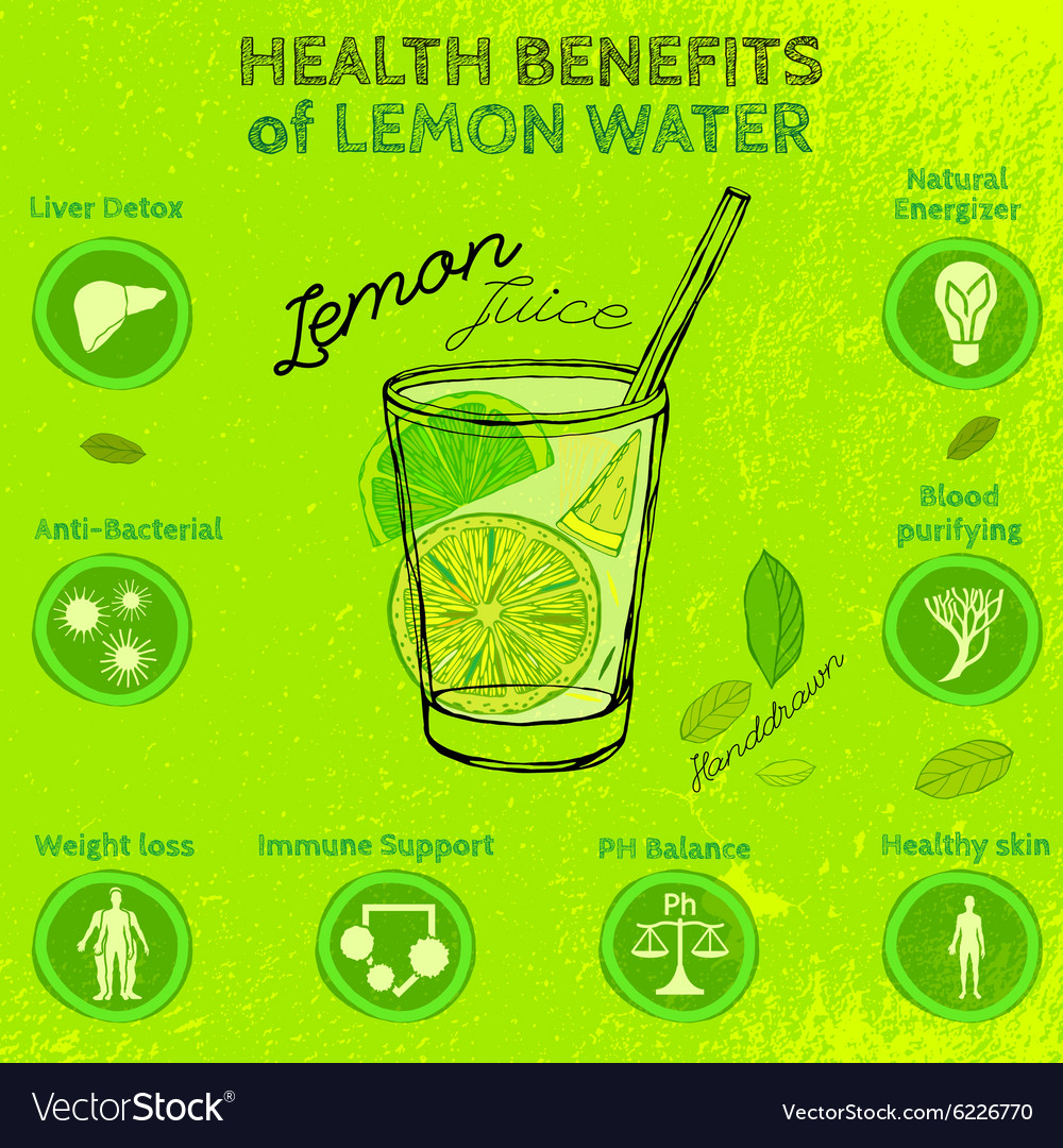 Handdrawn lemon infographic vector