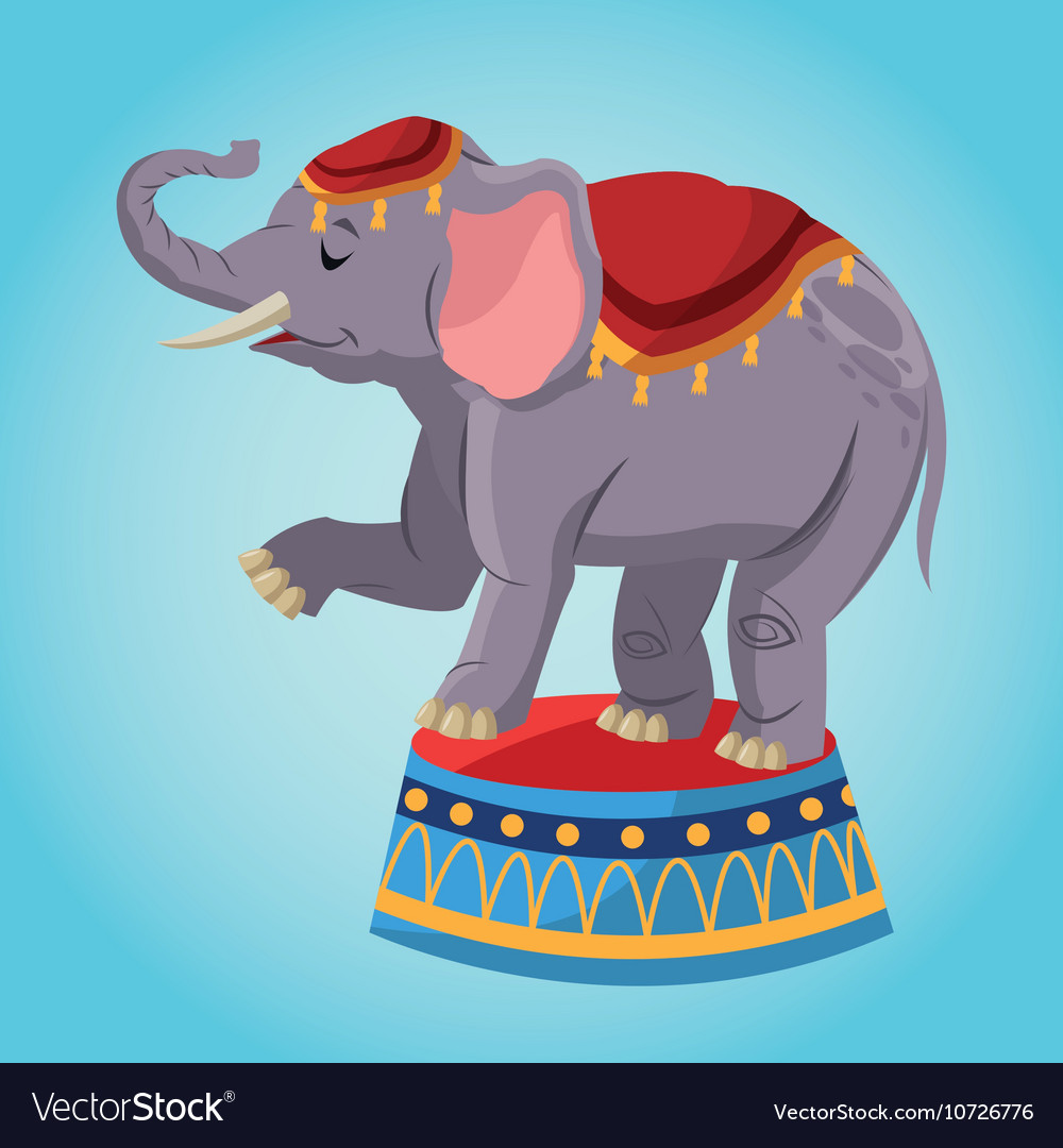 Elephant cartoon of circus vector