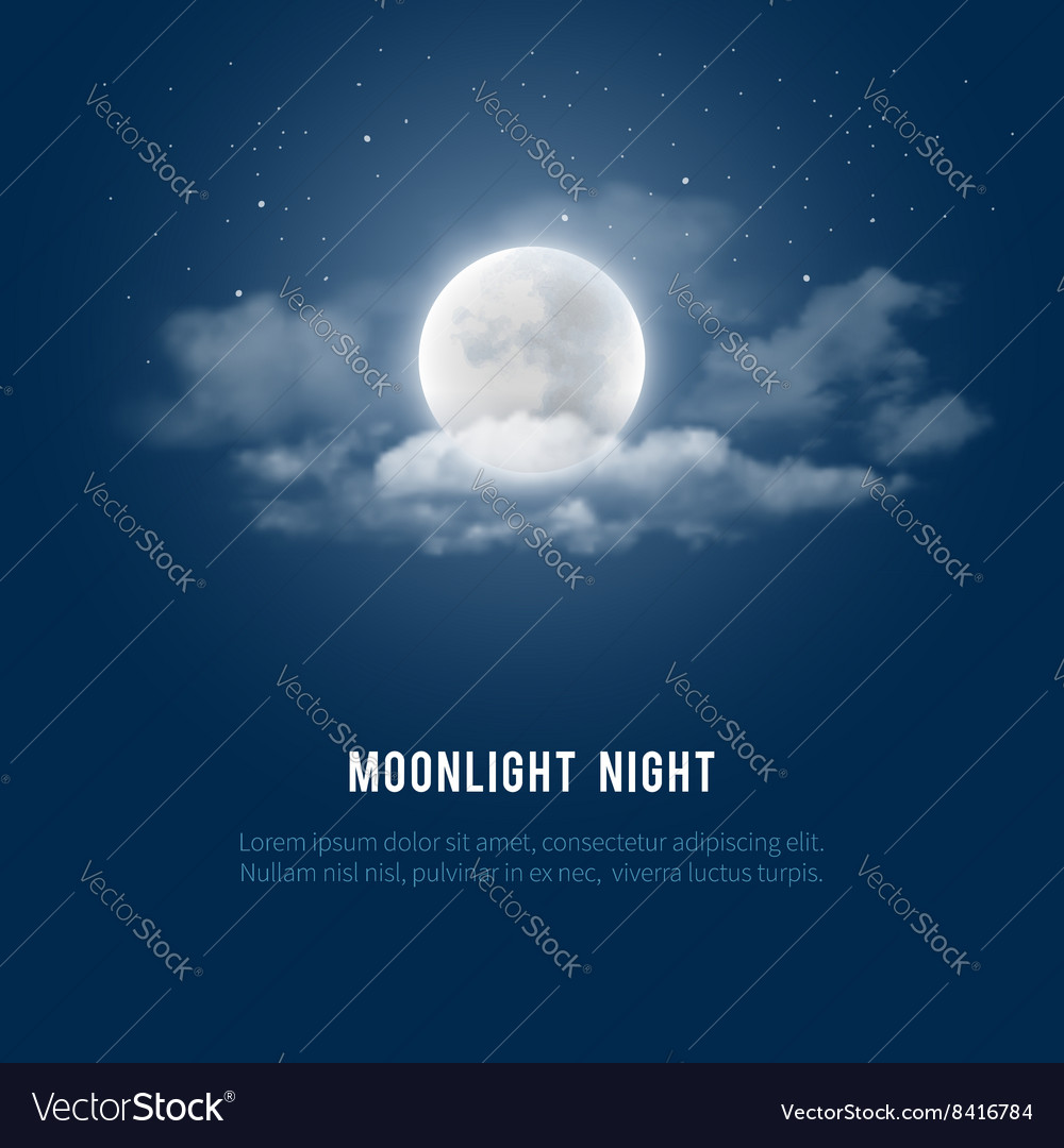 Moonlight night vector