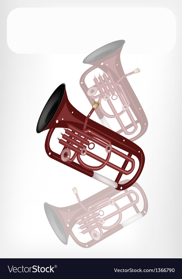 A musical euphonium with a white banner vector