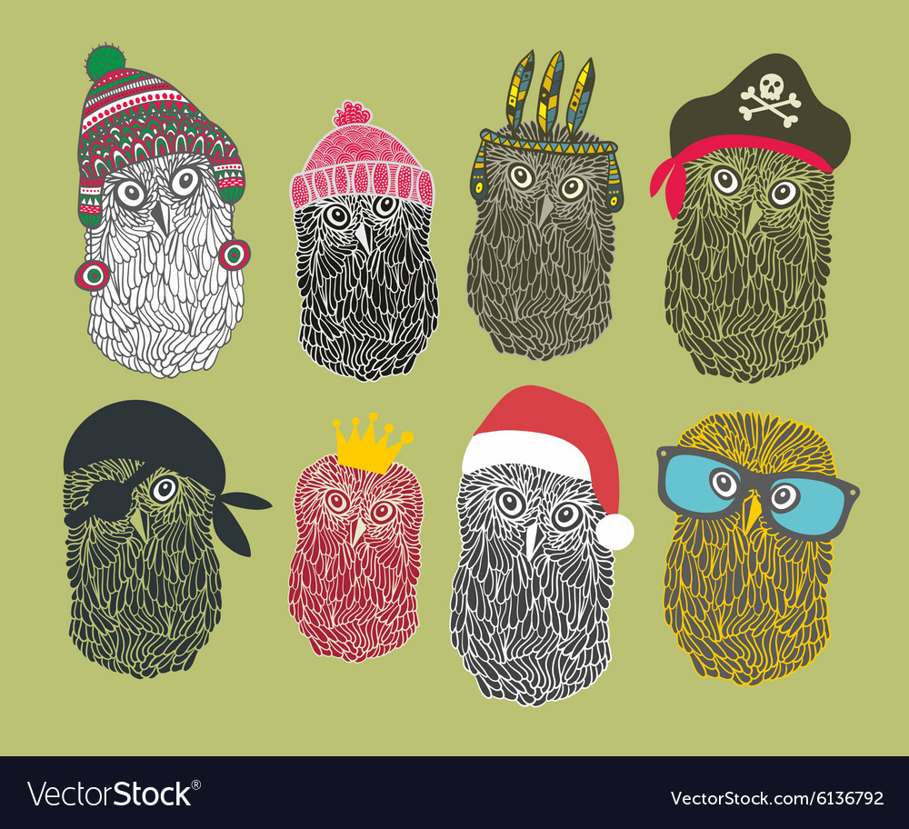 Collection of cute owls in costumes vector