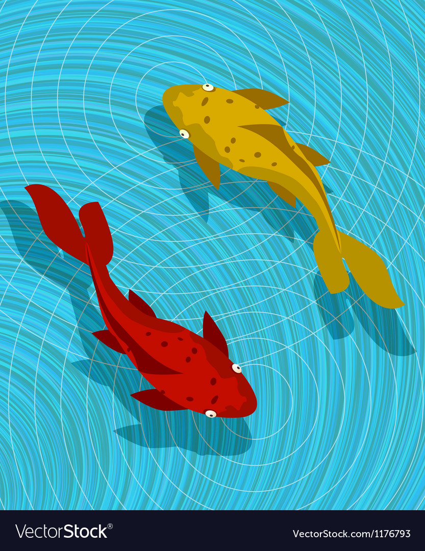 Koi fish scene vector