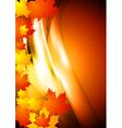 Bright autumn design vector image