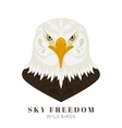 Dangerous eagle vector image