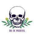 mexican print - dia de muertos day of the dead vector image