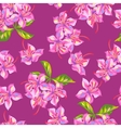 Seamless pattern with rhododendron flowers Bright vector image
