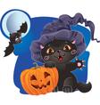 halloween cat design vector image