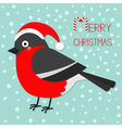 Merry Christmas greeting card Bullfinch winter red vector image