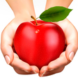 ed ripe apple in a hands Concept of diet vector image vector image