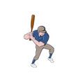 Baseball Player Batting Isolated Cartoon vector image