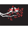 love birds on branch vector image