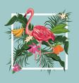 flamingo bird mango banana leaves exotic tropical vector image