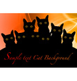 cat black background orange vector image vector image