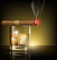 glass of whiskey with ice cubes and cigar vector image