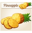 Pineapple Ananas fruit Cartoon icon vector image