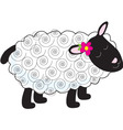 little lamb vector image vector image