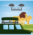 african safari design vector image