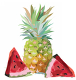 Watercolor Pineapple and Watermelon vector image