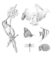 A collection or set of hand drawn vintage styled vector image