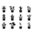 pot plants icons set vector image vector image