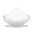 salt and rice vector image