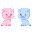 baby pigs vector image