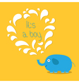 Its a boy Baby shower card with elephant and vector image