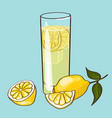 flat fresh drink concept vector image