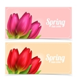 Tulip flowers composition vector image