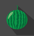 watermelon cartoon flat icondark background vector image