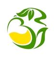 Teapot with green herbal tea vector image vector image