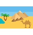 Camel in Sahara desert with the pyramids and palm vector image