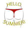 T shirt typography graphics Hello summer Sexy butt vector image