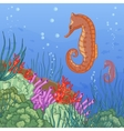 Underwater world with coral reefs and sea-horse vector image