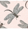 Seamless pattern with dragonfly on a rose vector image