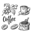 Sack with coffee beans with wooden scoop and beans vector image